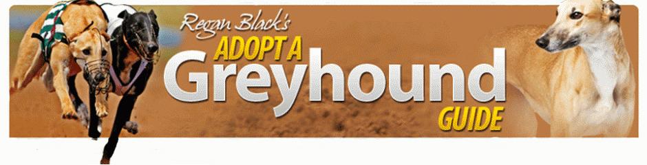 Adopt A Greyhound Guide